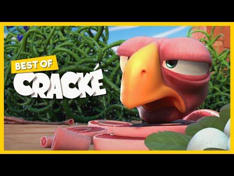 CRACKÉ - Alambre de espino   Dibujos animados para niños   Compilacion