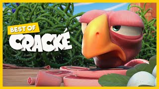 CRACKÉ - Alambre de espino | Dibujos animados para niños | Compilacion