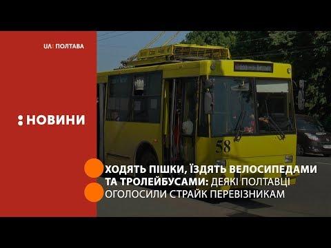 UA: Полтава: Ходять пішки, їздять велосипедами та тролейбусами: страйк полтавських пасажирів