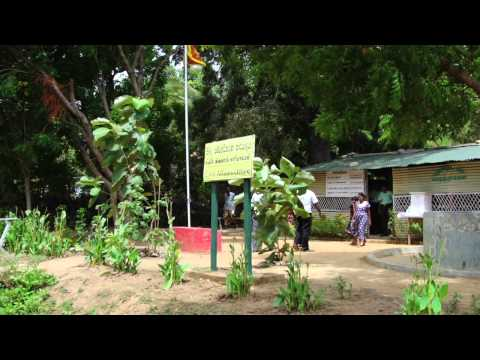 The City of Peace and Hope - Reviving Kilinochchi