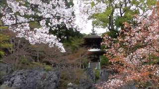 Ishiyamadera Temple In Shiga Pref. Japan - The Oldest Building Of The Kakezukuri Style -