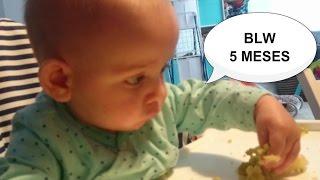 crianza con apego primer da con blw 5 meses beb