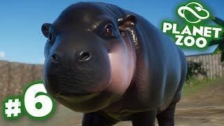 A Bouncing Baba Hippo!!! - Planet Zoo | Ep6 HD