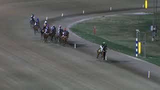 Vidéo de la course PMU PRIX SINGALO