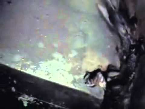Deepwater Horizon BOP secrets Pt. 2