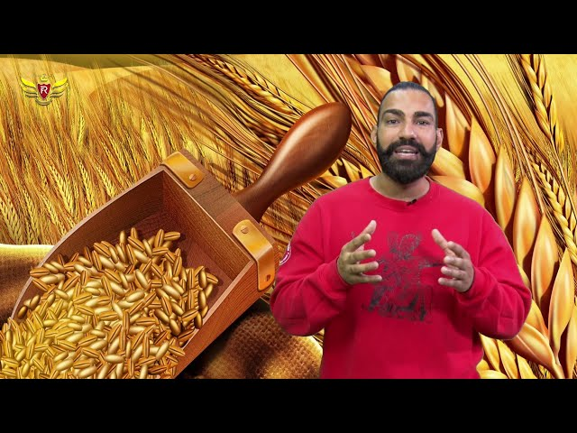 Royal Academy| Folk Revolution|Bhangra| Channel Punjabi| Episode - 1|Part -2