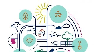 Private Sector Drivers for Sustainable Growth in Agriculture