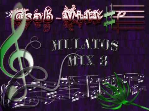 Download Csab-Vill - Mulatos Mix 8