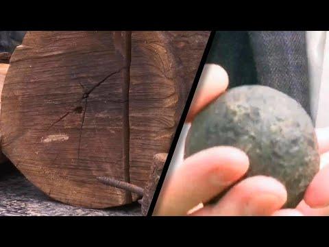Civil War Cannonball Found in Old Missouri Tree