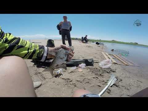 Бешеный клев леща на Капчагае. Рыбалка лето 2019