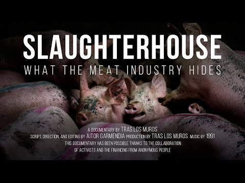 Slaughterhouse What the meat industry hides  Documentary film