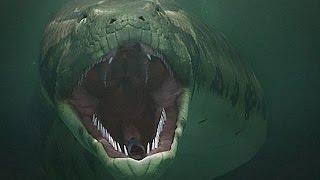 Самая большая змея Титаноба