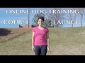 Online Dog Training – Puppy Training Basics Course!