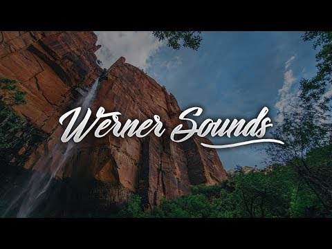 Vicetone - Heartbeat (DMNDZ Remix) [Werner Sounds]