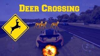 Deer Crossing!!! in Forza 6 Big Crash