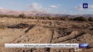 """""""حماية الطبيعة"""" تستنكر تجريف 1600 دونم من أراضي محمية فيفا (4/1/2020)"""