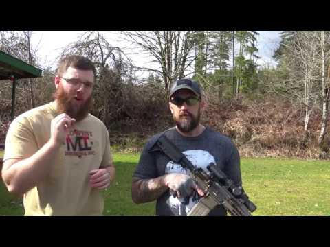 Do Everything Iron Sights? Sidewinder BUIS Review