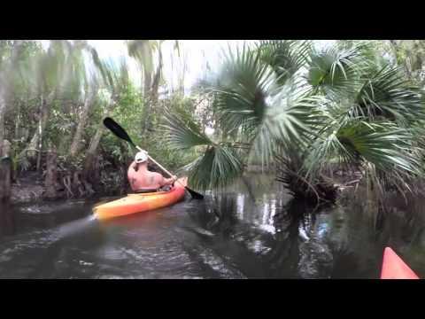 Kayaking on the Loxahatchee River