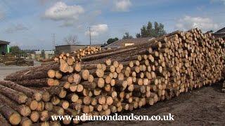 Timber Merchants - A Diamond & Son Timber Ltd