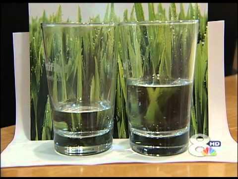 Ocean Solution - Plant Mineralizer