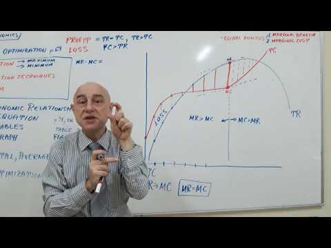 Microeconomics - Lecture 07