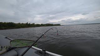 Наконец то Крупный ЛЕЩ пошёл. Рыбалка на сильном течении. Ловля леща на кольцо 2019