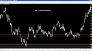 Accurate Forex Trader SAR 2