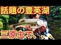【豊英湖でバス釣り】イマカツ・三原虫でバス攻略【バス釣り解禁で話題のあのダム】