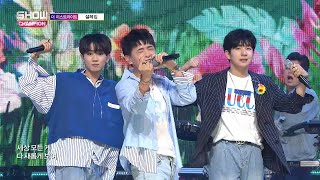 Show Champion EP.273 The East Light - Love Flutters