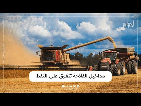 لأول مرة في تاريخ الجزائر مداخيل الفلاحة تفوق مداخيل البترول وتبلغ 25 مليار دولار