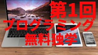 【完全無料】2週間のwebプログラミング動画講座