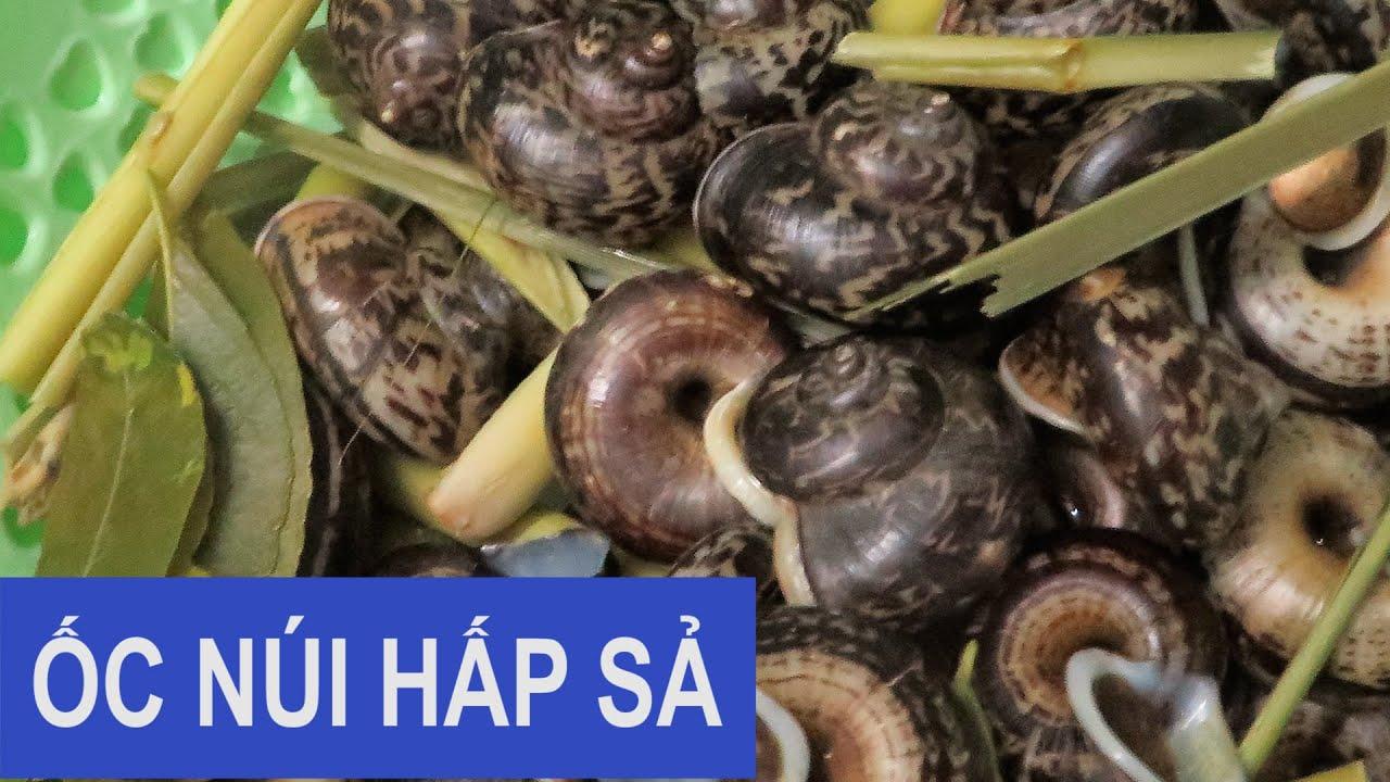 MÓN NGON TÂY BẮC Ốc núi hấp sả | Mountain lemongrass steamed snails