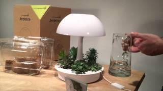 Ambienta Unboxing Video
