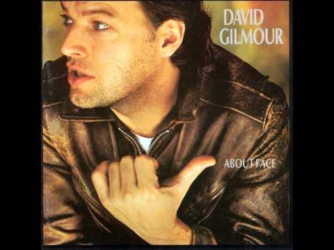 David Gilmour Cruise