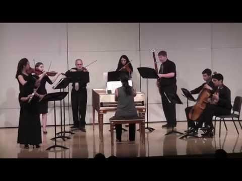 Telemann Flute Concerto in D Major, TWV 51:D2