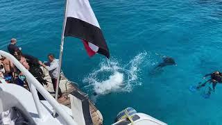 Прогулка на яхте 2 Египет 2021 вдоль Шарм Эль Шейха