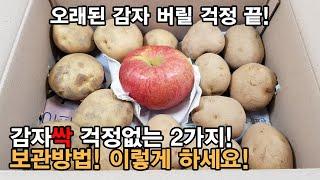 감자 보관법 ! 감자 싹 걱정 없는 2가지 보관방법 !…