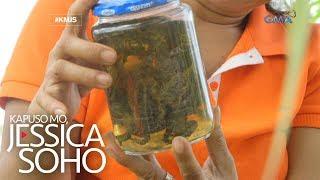 Kapuso Mo, Jessica Soho: Babae sa Butuan, sumusuka diumano ng palaka at insekto?