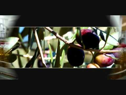 Bulk olive oil, Wholesale olive oil, Olive oil suppliers