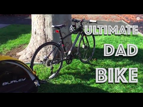 Ultimate Dad Bike