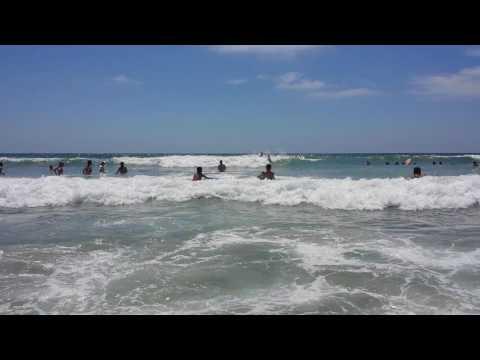 Surf SanDiego
