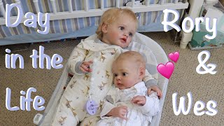 Day In The Life Of Reborn Rory And Wesley Kelli Maple