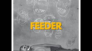 Watch Feeder Quiet video