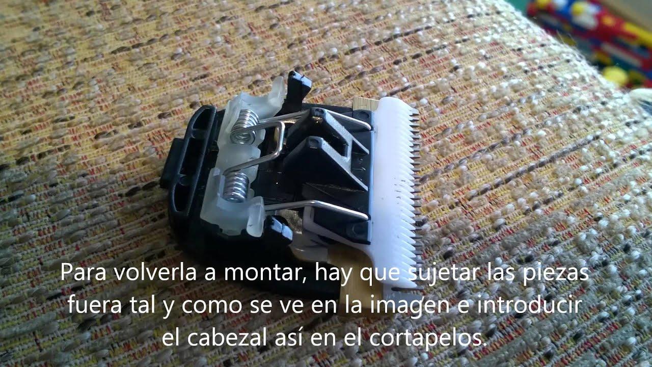 Como montar el cabezal del cortapelos Orbegozo CTP 2000 ...