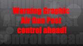 Marauder Pistol Stock Adapter - YouTube