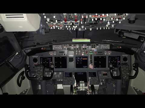 Delta Airlines B737-900(ETOPS) Cockpit/Cabin Walk-Thru