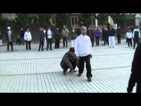 Chinese Internal Martial Arts-Various Masters China--2