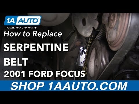 How to Replace Serpentine Belt 00-04 Ford Focus