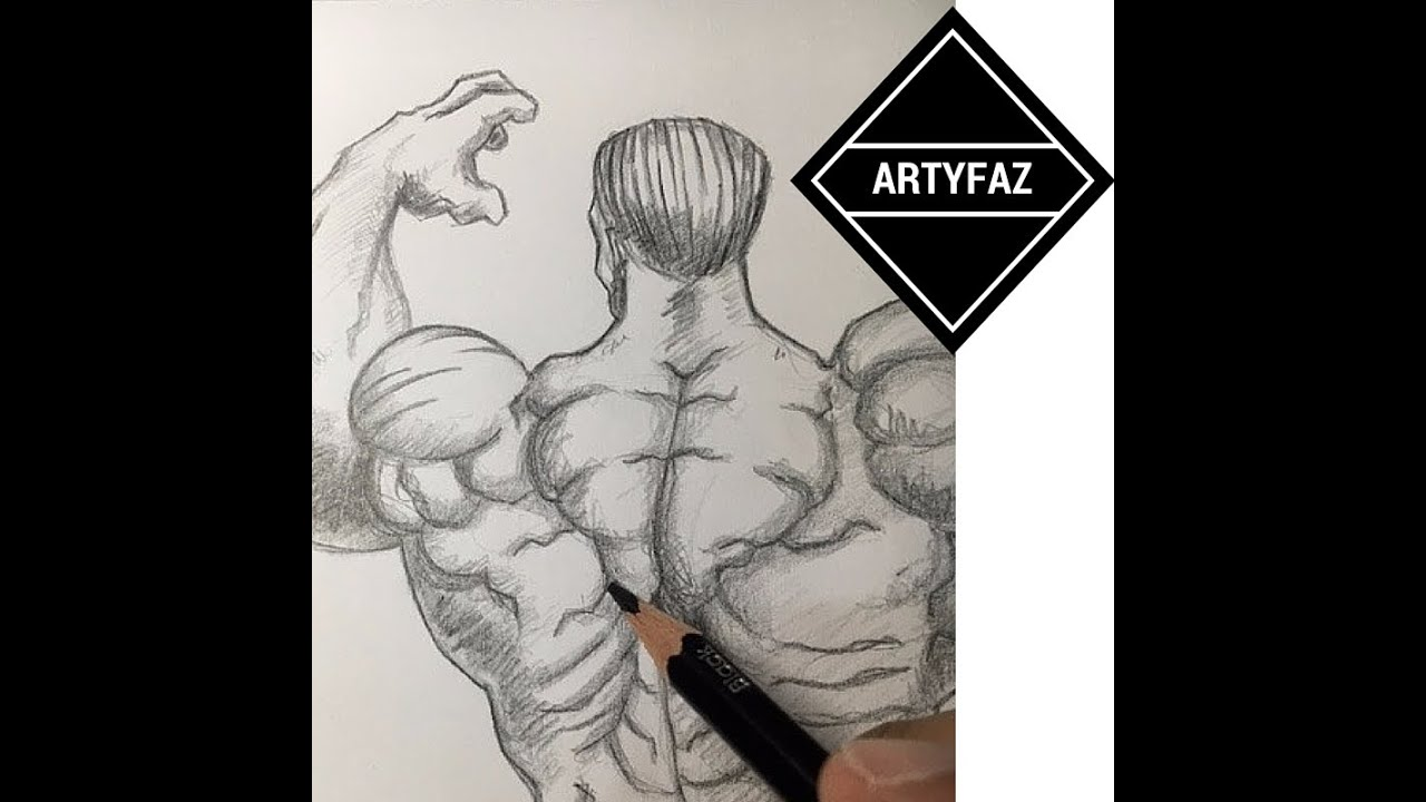 It is a picture of Sizzling Back Muscle Drawing