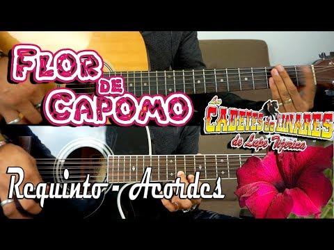 Tutorial | Flor de capomo | Los Cadetes de Linares | Requinto | Acordes | TABS
